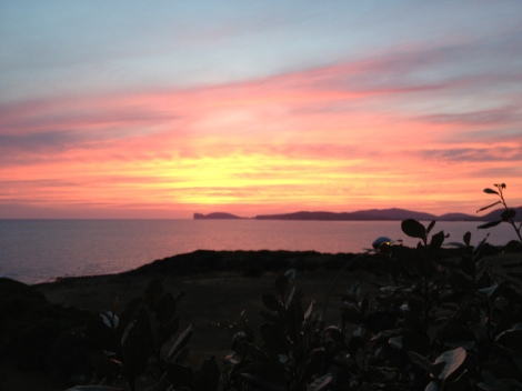 Insalata di calamari...e tramonto
